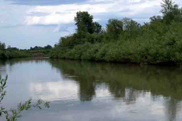 Фото река Алей, рыбалка 2014