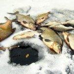 Рыбалка на леща на Белгородском водохранилище