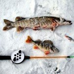 Рыбалка на озерах Томской области балансиром зимой