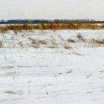 Зимняя рыбалка жерлицами на мелководье