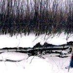 Рыбалка по перволедью в Кировской области