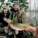 Рыбалка на прорве Сосьвы перед ледоставом