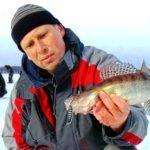Колебалки в зимней рыбалке